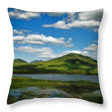 Throw Pillow featuring the photograph Springtime In The Bigelow Mountains by Alana Ranney