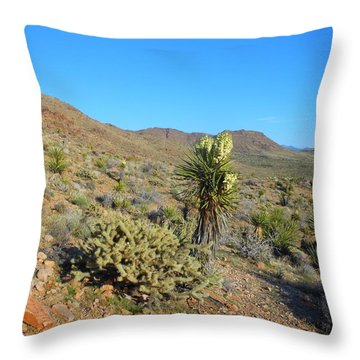 Springtime In The Cerbat Mountain Foothills Throw Pillow