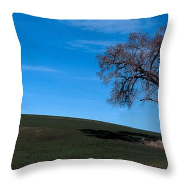 Springtime In The Palouse Throw Pillow