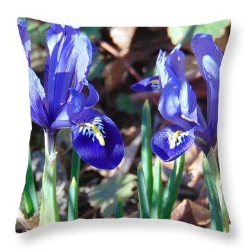 Springtime Irises Throw Pillow