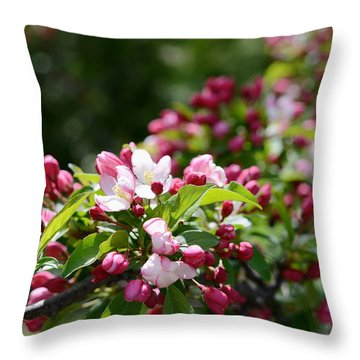 Throw Pillow featuring the photograph Springtime by Linda Mishler