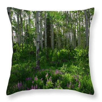Springtime On The Grand Mesa Throw Pillow by Ernie Echols