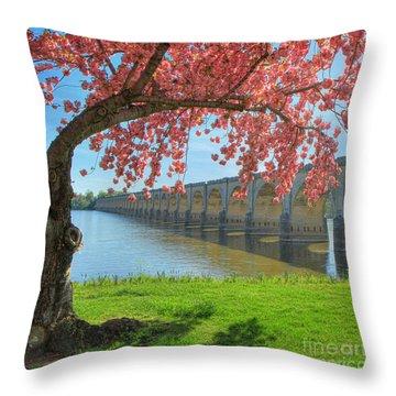 Springtime On The River Throw Pillow