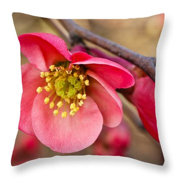 Springtime Quince Throw Pillow by Julie Andel