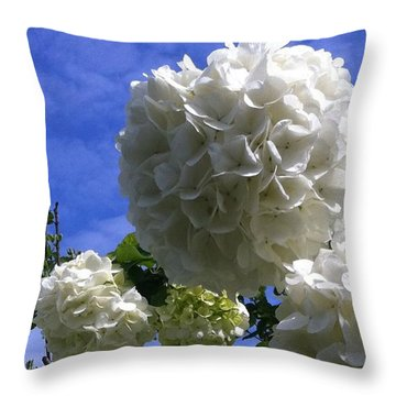 Throw Pillow featuring the photograph Springtime Snowballs by Shelia Kempf