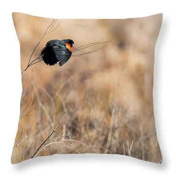 Springtime Song Throw Pillow by Bill Wakeley