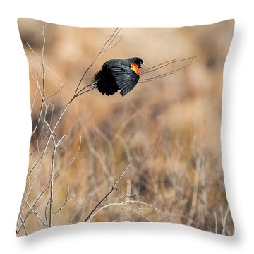 Springtime Song Square Throw Pillow by Bill Wakeley