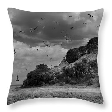 Sprogoe Lighthouse Throw Pillow by Robert Lacy