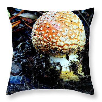 Throw Pillow featuring the photograph Sprout by Faith Williams