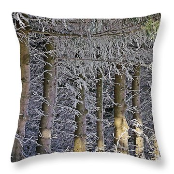 Throw Pillow featuring the photograph Spruce And Snow by Christian Mattison