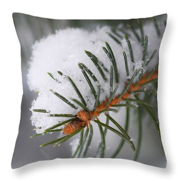 Spruce Branch With Snow Throw Pillow by Elena Elisseeva