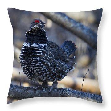 Spruce Hen Throw Pillow
