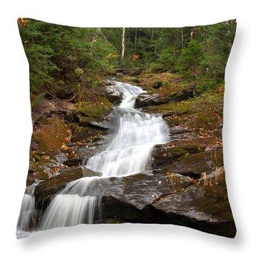 Spur Brook Cascade Throw Pillow by Brett Pelletier
