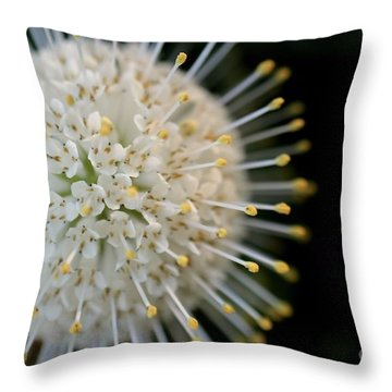Sputnik Throw Pillow by Kenny Glotfelty