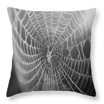 Spyder Web Throw Pillow