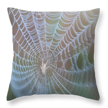 Spyder's Web Throw Pillow