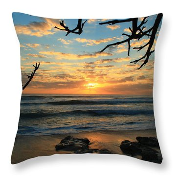 Spying At The Sun Throw Pillow