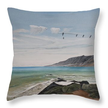 Squadron Of Pelicans Central Califonia Throw Pillow