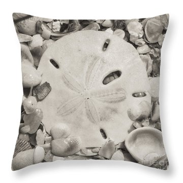 Square Sepia Sand Dollar Throw Pillow