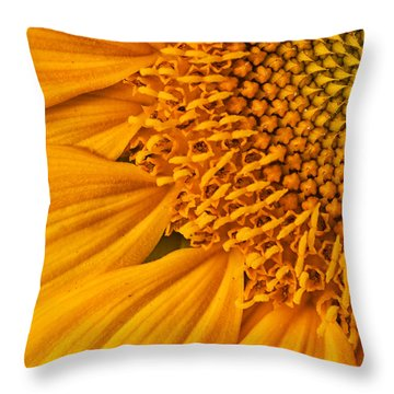 Square Sunflower Throw Pillow