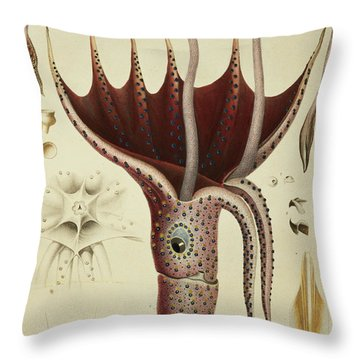 Squid Throw Pillow by A Chazal