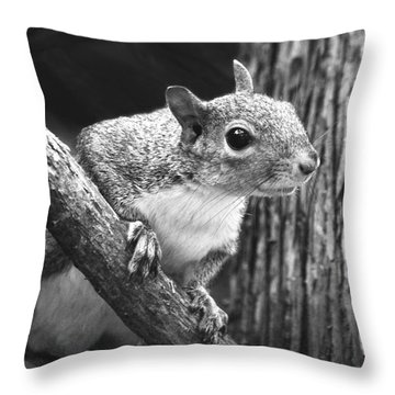 Squirrel Black And White Throw Pillow by Sandi OReilly
