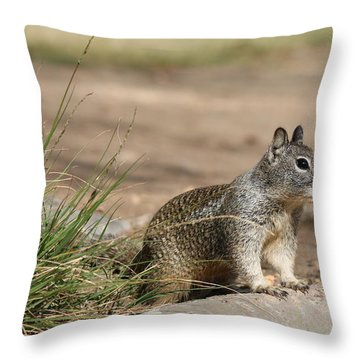 The Beggar  Throw Pillow by Christy Pooschke