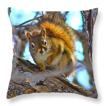 Squirrel Duty. Throw Pillow