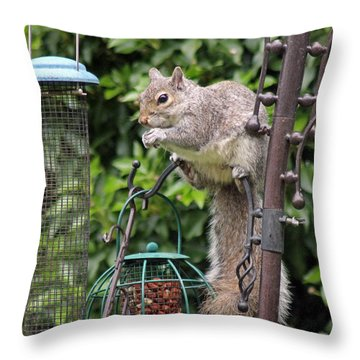 Squirrel Eating Nuts Throw Pillow