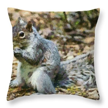 Squirrel In Central Park Throw Pillow by George Atsametakis