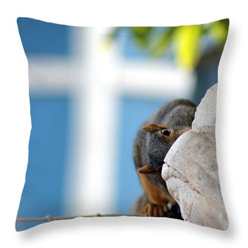Squirrel In Hiding Throw Pillow