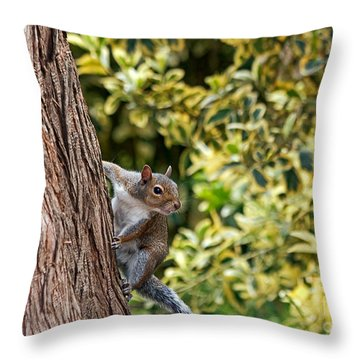 Throw Pillow featuring the photograph Squirrel by Kate Brown