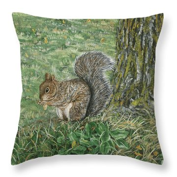 Squirrel Throw Pillow by Lucinda V VanVleck