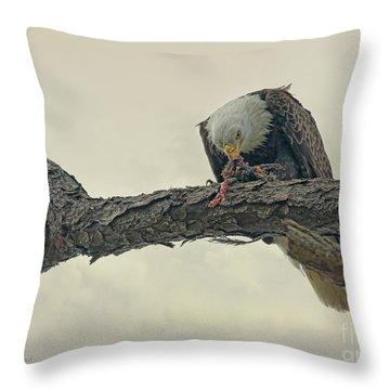 Squirrel Lunch Throw Pillow by Deborah Benoit