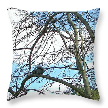 Throw Pillow featuring the photograph Squirrel Maze by Pamela Hyde Wilson