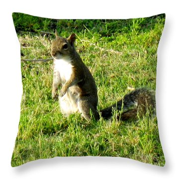 Throw Pillow featuring the photograph Squirrel by Oksana Semenchenko