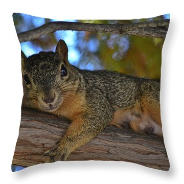 Squirrel On Watch Throw Pillow