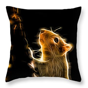 Squirrel Throw Pillow by Ron Harpham