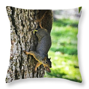Squirrel With Pecan Throw Pillow by Debbie Portwood