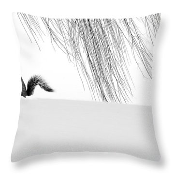 Squirrel Throw Pillow by Yue Wang