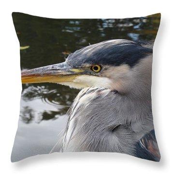 Sr Heron  Throw Pillow by Cheryl Hoyle