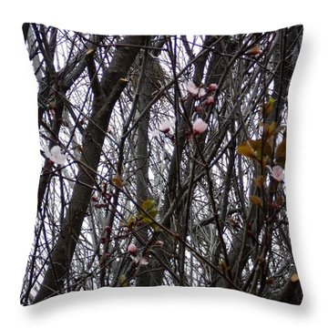 Spring Blossoms Throw Pillow by Carla Carson