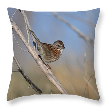 Ss 3 Throw Pillow