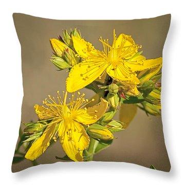 St Johns Wort Throw Pillow by Betty Depee