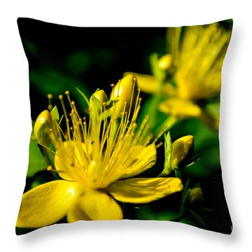 St John's Wort Throw Pillow by Scott Lyons