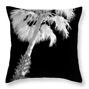 St. Maarten Tropical Palm Throw Pillow