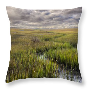 St Mary's Island Georgia Throw Pillow