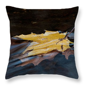 Stacked Autumn Leaves On Water Throw Pillow