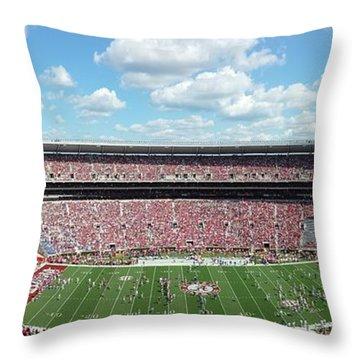 Stadium Panorama View Throw Pillow