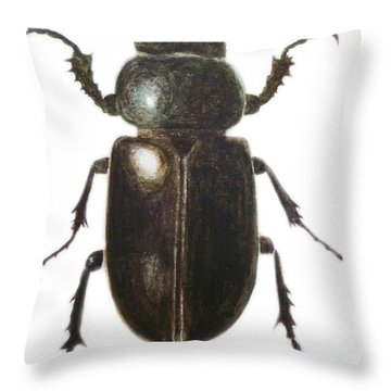 Stag Beetle Throw Pillow by Ele Grafton